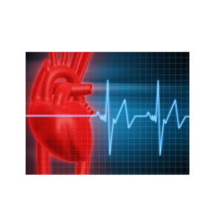 https://www.glenviewterrace.com/wp-content/uploads/2017/12/Glenview-Terrace-PHOTO-2017-WEBSITE-HEART-DISEASE-240x240.jpg