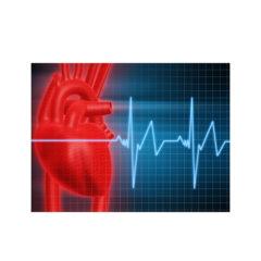 http://www.glenviewterrace.com/wp-content/uploads/2017/12/Glenview-Terrace-PHOTO-2017-WEBSITE-HEART-DISEASE-240x240.jpg